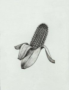 Cactus banana